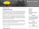 Thumbnail of burtonini.com